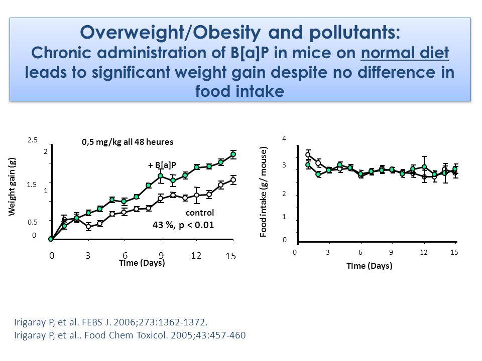 Overweight/Obesity and pollutants: Chronic administration of B[a]P in mice on normal diet leads to significant weight gain despite no difference in food intake